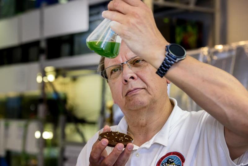 Ein Mann begutachtet eine grüne Flüssigkeit im Reagenzglas