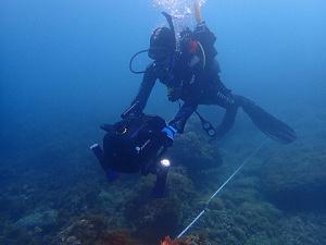 Ein Taucher unter Wasser, der eine Kamera führt